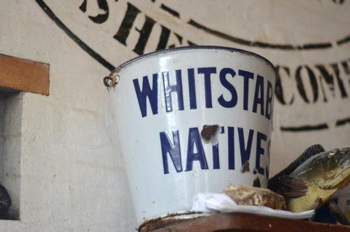 whistable-bucket